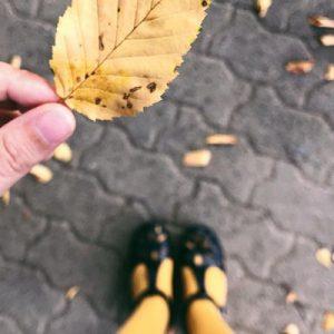 Buoni motivi per amare l'autunno